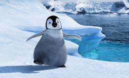 gravidez-andar-pinguim