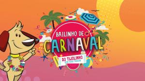 bailinho de carnaval do tijolinho roteiro carnaval infantil rio
